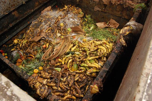 Perdida de alimentos agricolas por mala gestión en cuba