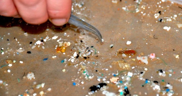 La contaminación por microplásticos afecta al organismo humano