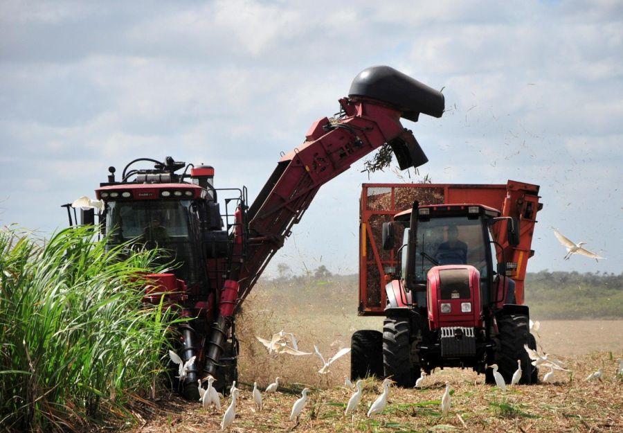 Machado Ventura comienza un nuevo recorrido para controlar la próxima zafra azucarera