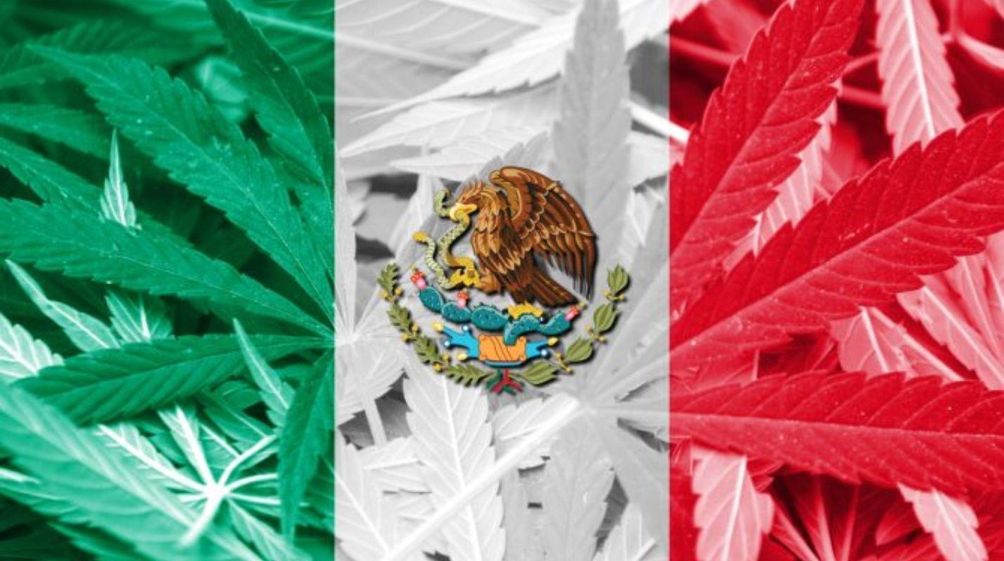 Despenalizan el consumo de marihuana en México